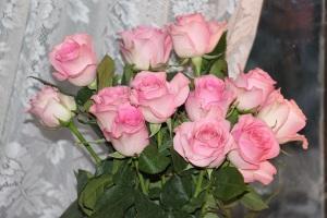 Birthday roses 6-15-14